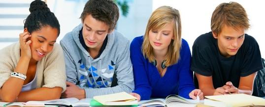 Srednjoškolska grupa za probleme u učenju